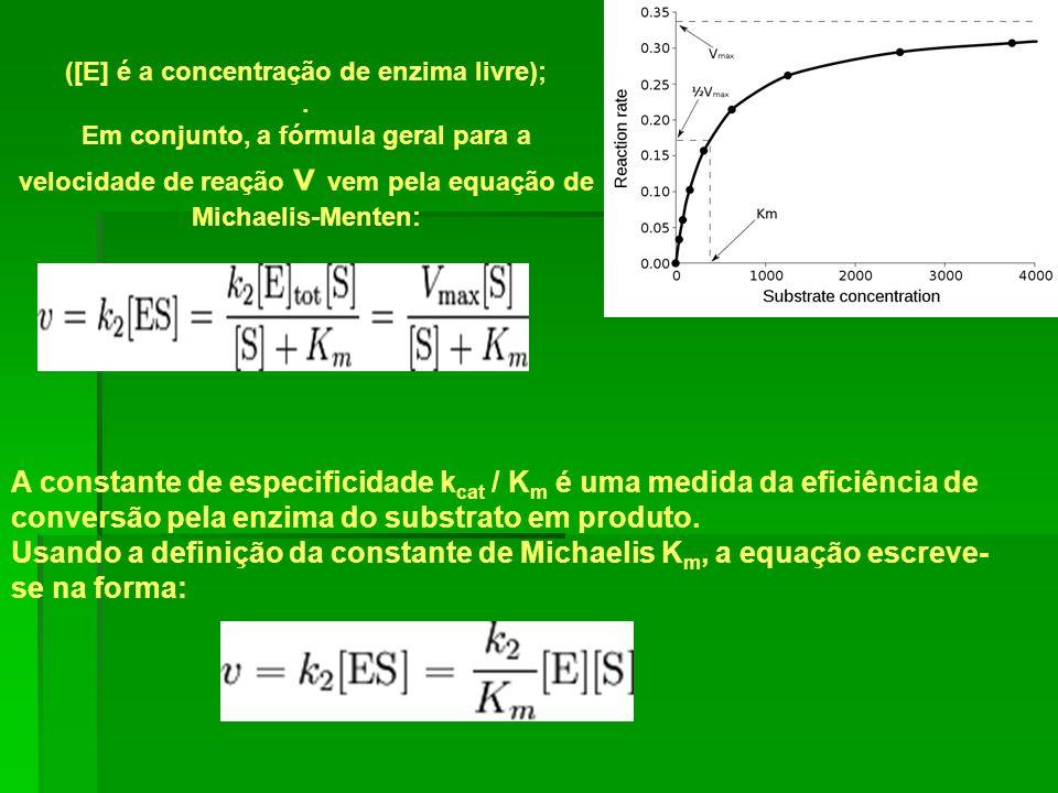 ([E] é a concentração de enzima livre);